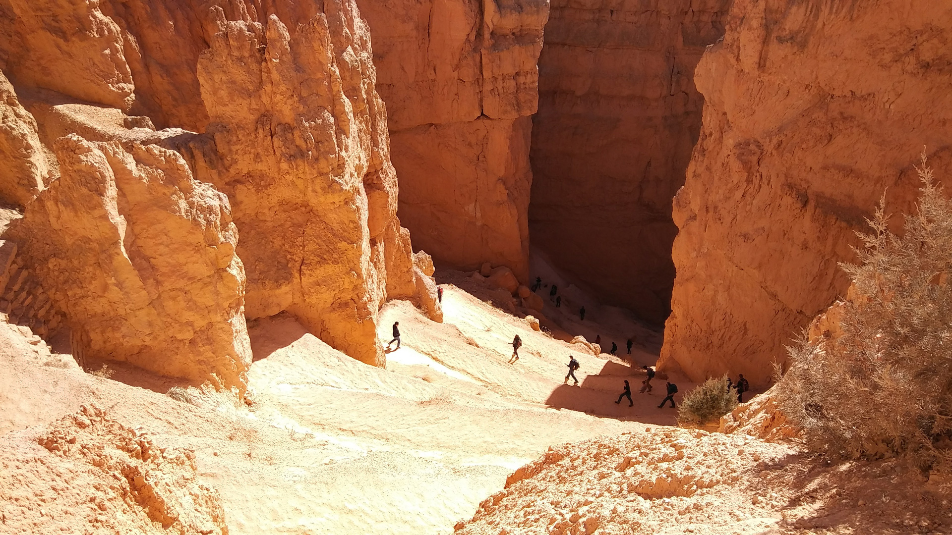 Bryce canyon national park for Bryce canyon cabin rentals